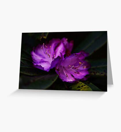 PS3-6-51129 Greeting Card