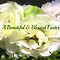 *Feature Page/Easter Flowers -Enchanted Flowers*
