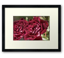 Lush Duo Framed Print