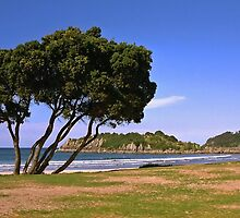 Mount Maunganui Beach by AnnDixon