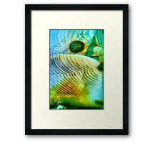 Baby Bird In Folded Wings (macro abstract) Framed Print