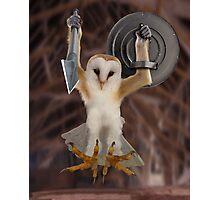 Spartan Gibbon Owl Photographic Print