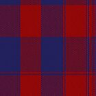 01308 Washington Bonnie Fashion Tartan Fabric Print Iphone Case by Detnecs2013
