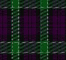 01312 Portland Playa's Fashion Tartan Fabric Print Iphone Case by Detnecs2013