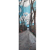 Chateau Road  Photographic Print
