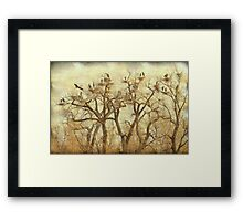 Thats A Lot Of Great Blue Heron Framed Print