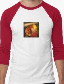 Golden Pheasant Men's Baseball ¾ T-Shirt