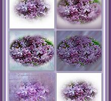 A Bouquet Of Lilacs by MotherNature