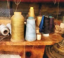 Tailor's Thread by Susan Savad