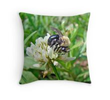 Bumblebee on White Clover Throw Pillow
