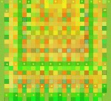 Wild Orange Blocks and Dots by Betty Mackey