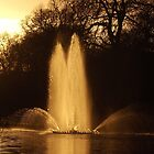 St. James's Park's Fountain on Sunset by MiyuSusy