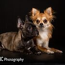 The best of Buddies by Mark Cooper