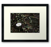 hello to you too. Framed Print