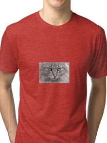 Cute Kittens T-Shirt Tri-blend T-Shirt