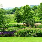 English Countryside - Hyde Hall, Essex by BlueMoonRose