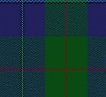 01362 Cambridge Fashion Tartan Fabric Print Iphone Case by Detnecs2013