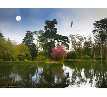 Restful Stow Lake Photographic Print