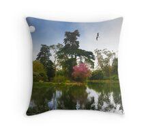 Restful Stow Lake Throw Pillow
