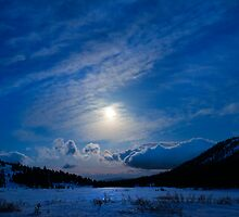 Moonlight Over Tahoe Meadows by Dianne Phelps