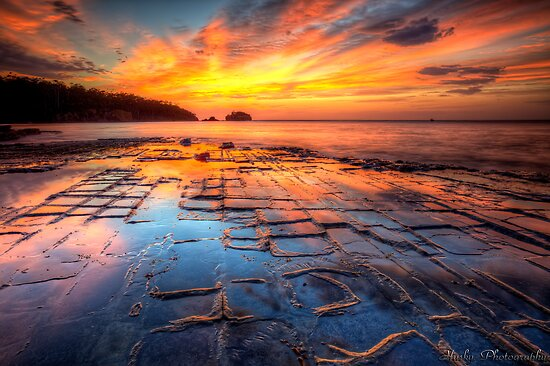 The Tessellated Pavement by Husky
