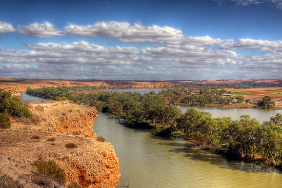 The River Murray - Walker's Flat, South Australia by Mark Richards