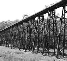The Stony Creek Trestle Bridge by MissyD