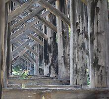 What Lies Beneath A Trestle Bridge by MissyD
