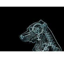 Mechanical Dog Photographic Print