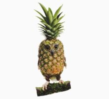 The Pineappowl by Felfriast