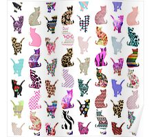 Girly Whimsical Cats aztec floral stripes pattern Poster