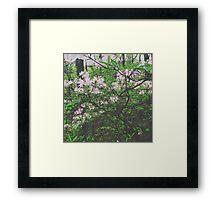 Faded Flower Forest Framed Print