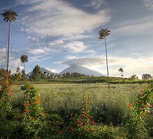 Early Morning in Rwanda by CharlotteMorse