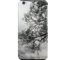 Before the Storm iPhone Case iPhone Case/Skin