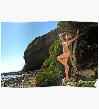 Sexy bikini on location of CA coastline  Poster
