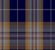 01378 Carsaig Fashion Tartan Fabric Print Iphone Case by Detnecs2013