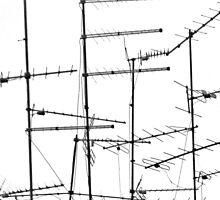 TV Antennas by christina chan