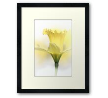 A smile upon my face.... Framed Print