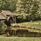 Mabry Mill by louann108