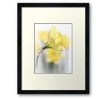 Happiness... Framed Print