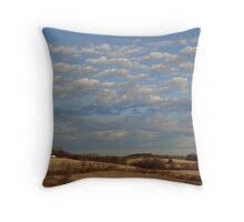 On a clear day I can see for miles and miles Throw Pillow