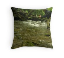 Rainy Day Fly Fishing Throw Pillow