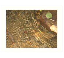 Underwater Brook Trout Art Print