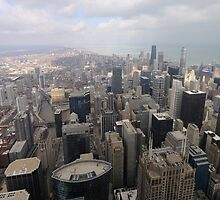 chicago skyline by Andy Fairgrieve