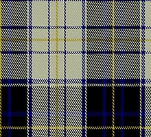 01395 Chieftain Fashion Tartan Fabric Print Iphone Case by Detnecs2013