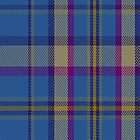 01403 Cian of Ely Tartan Fabric Print Iphone Case by Detnecs2013