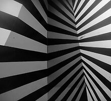 Zebra wall by Mavie