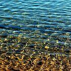 Lynx Lake by CKAStudios