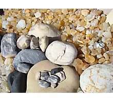 Petrified Driftwood Art Prints Beach Agates Rocks Photographic Print