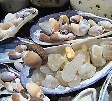 AGATES Rocks Art Prints Sea Shells Coastal by BasleeArtPrints